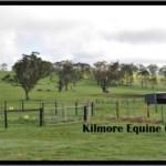 Kilmore Equine Clinic